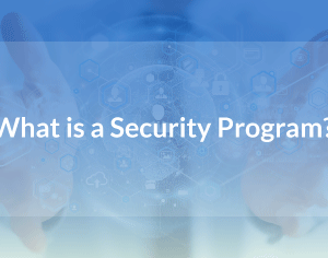 What is a Security Program?